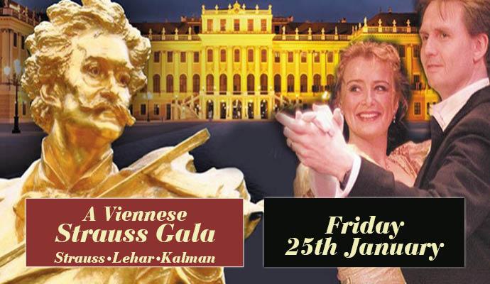 A Strauss Gala Image